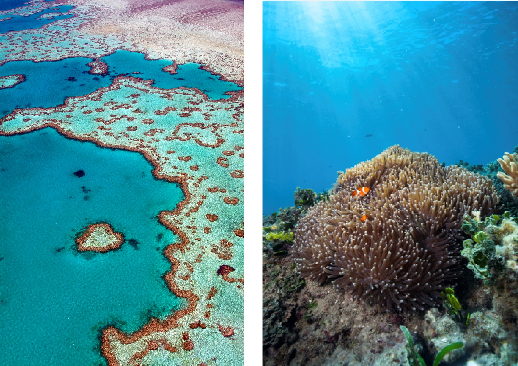 Lifechanging travel experiences in Australia