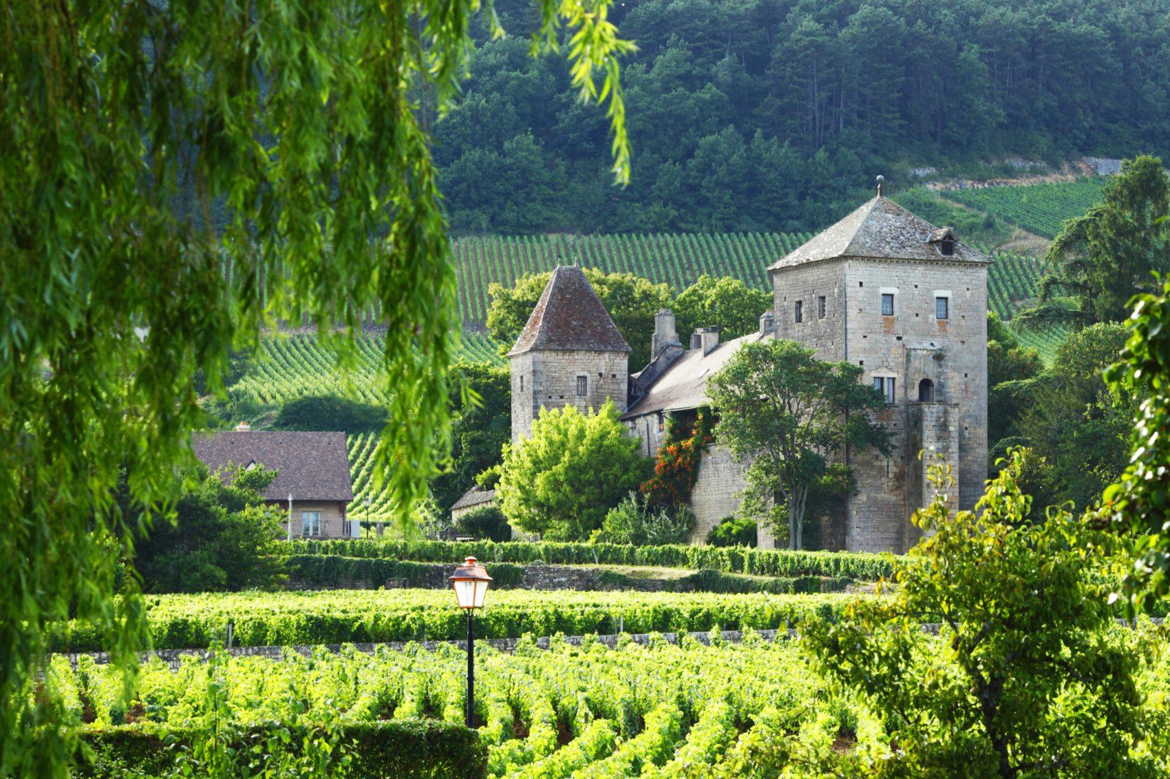 Burgundy trip from paris