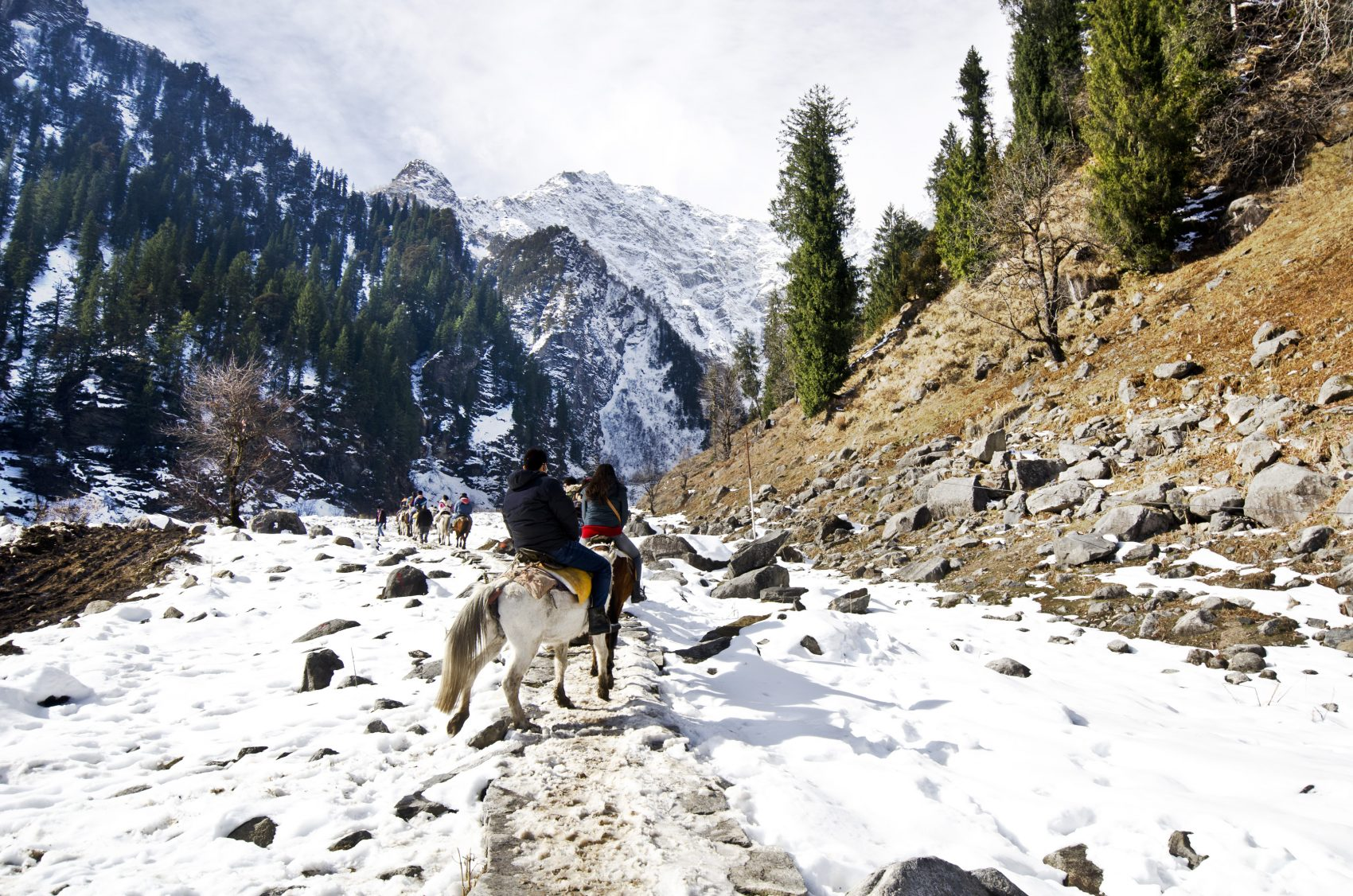 Solang Valley horseriding