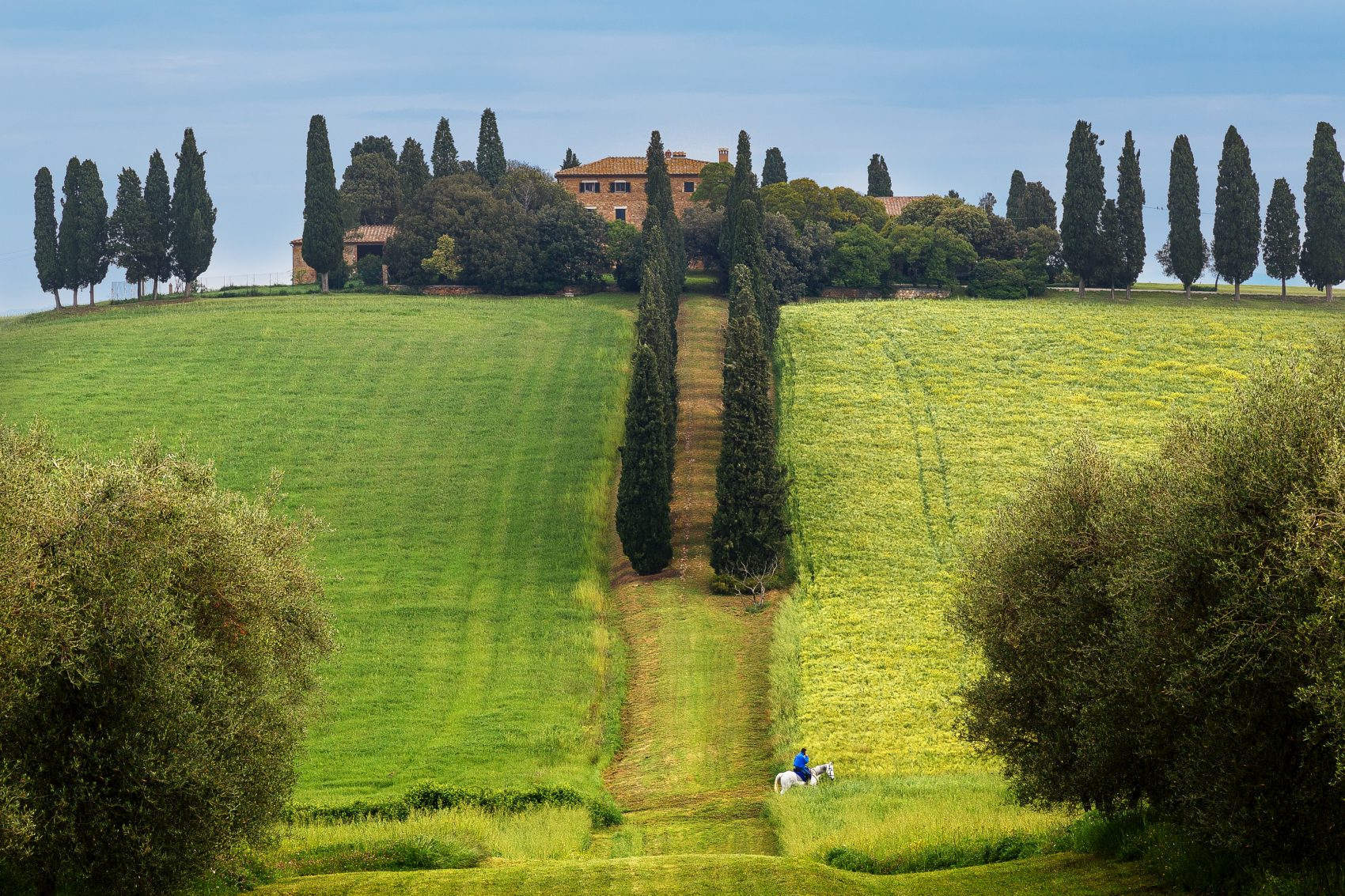 Horse riding in Tuscany