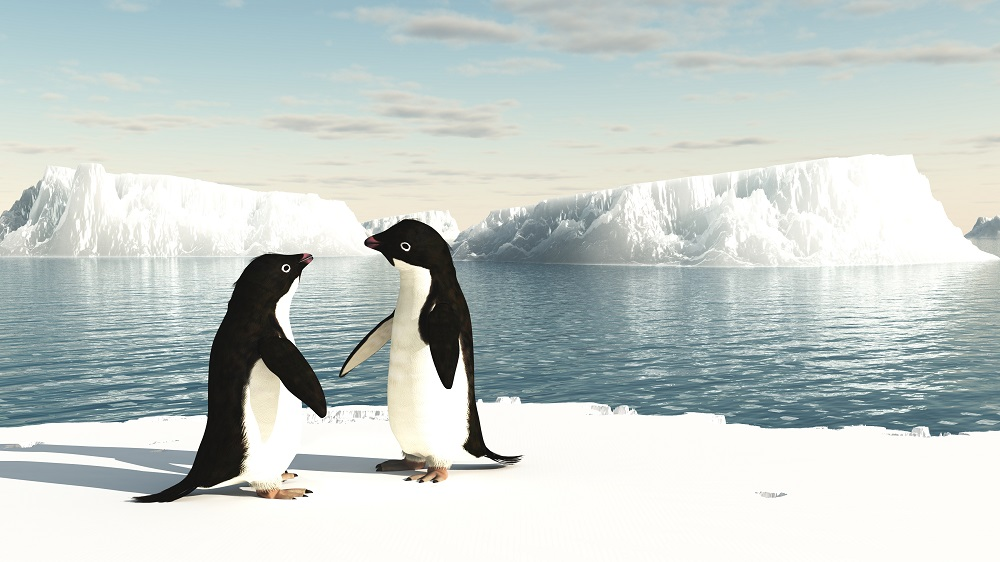 marine-life-protected-antarctica