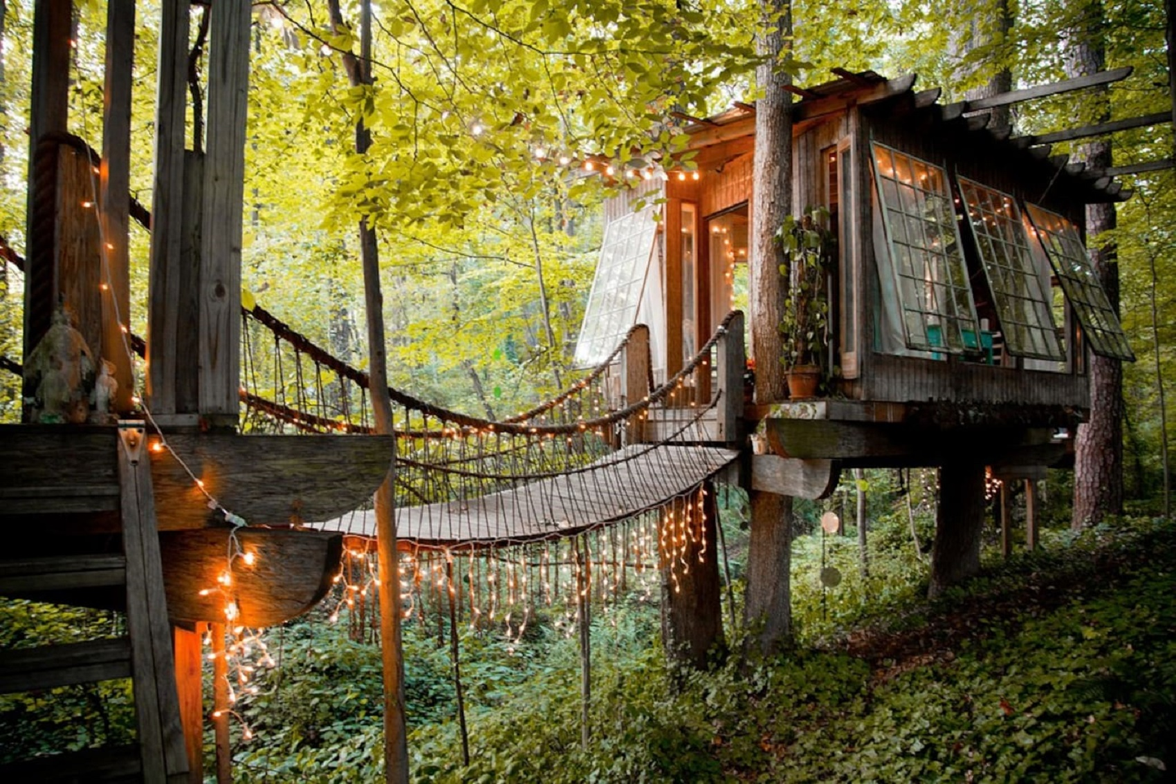 treehouse-vs-penthouse