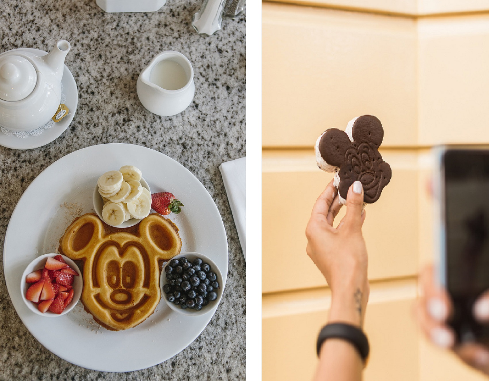 eat-mickey-mouse-blogger