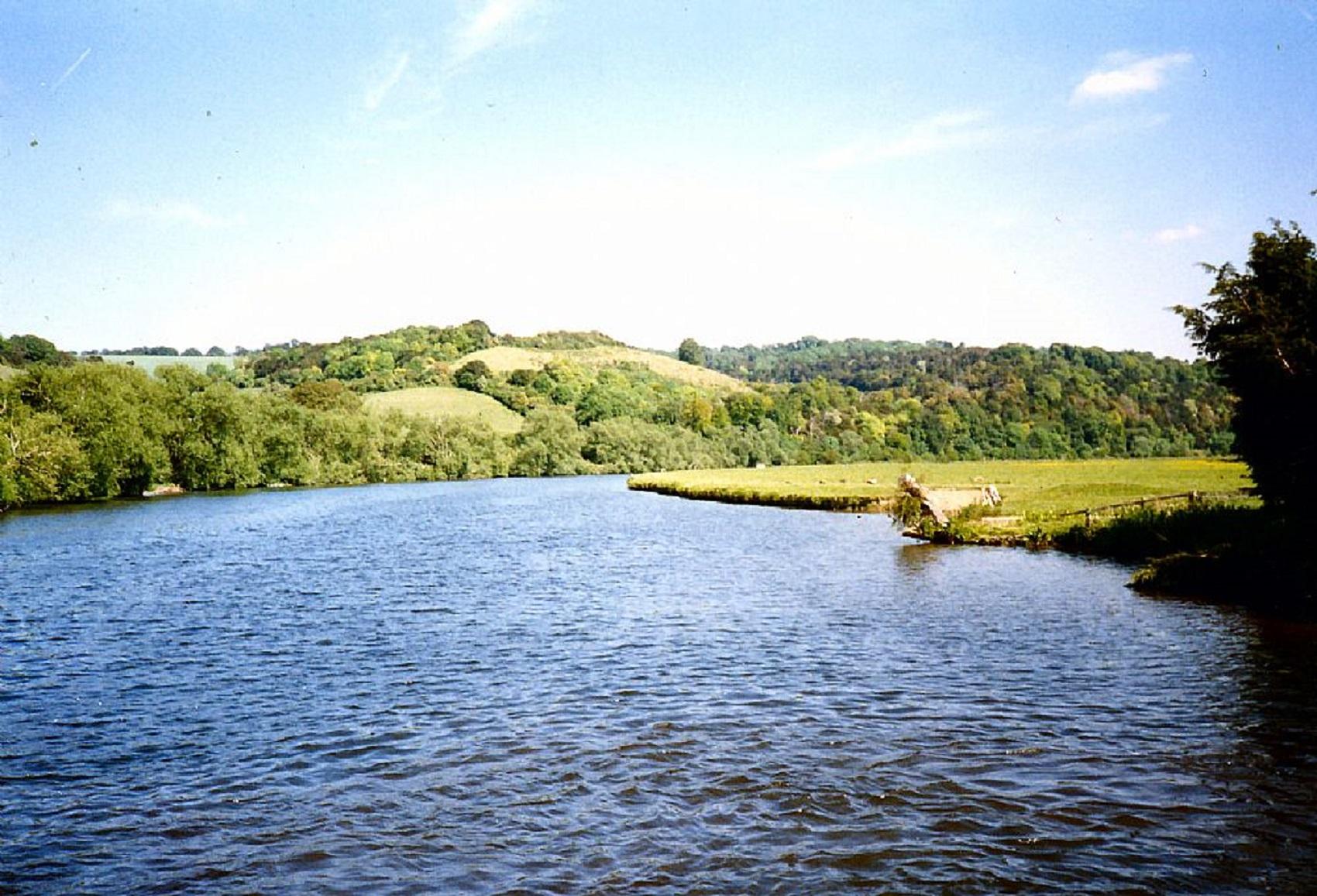 wild-swim-river-thames