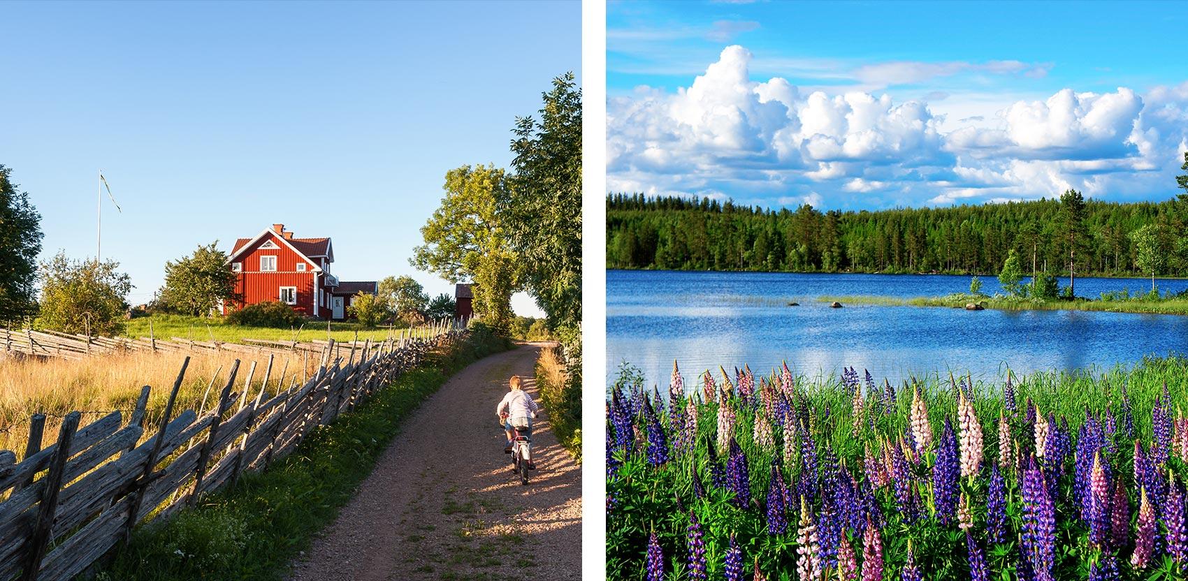 sweden-road-trip-1