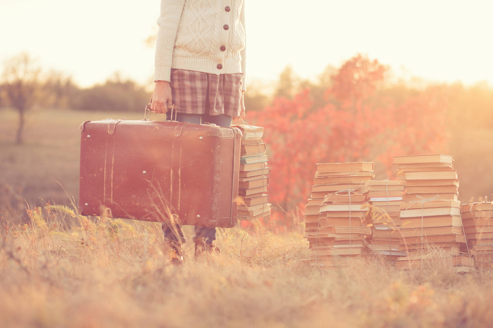 books-and-baggage
