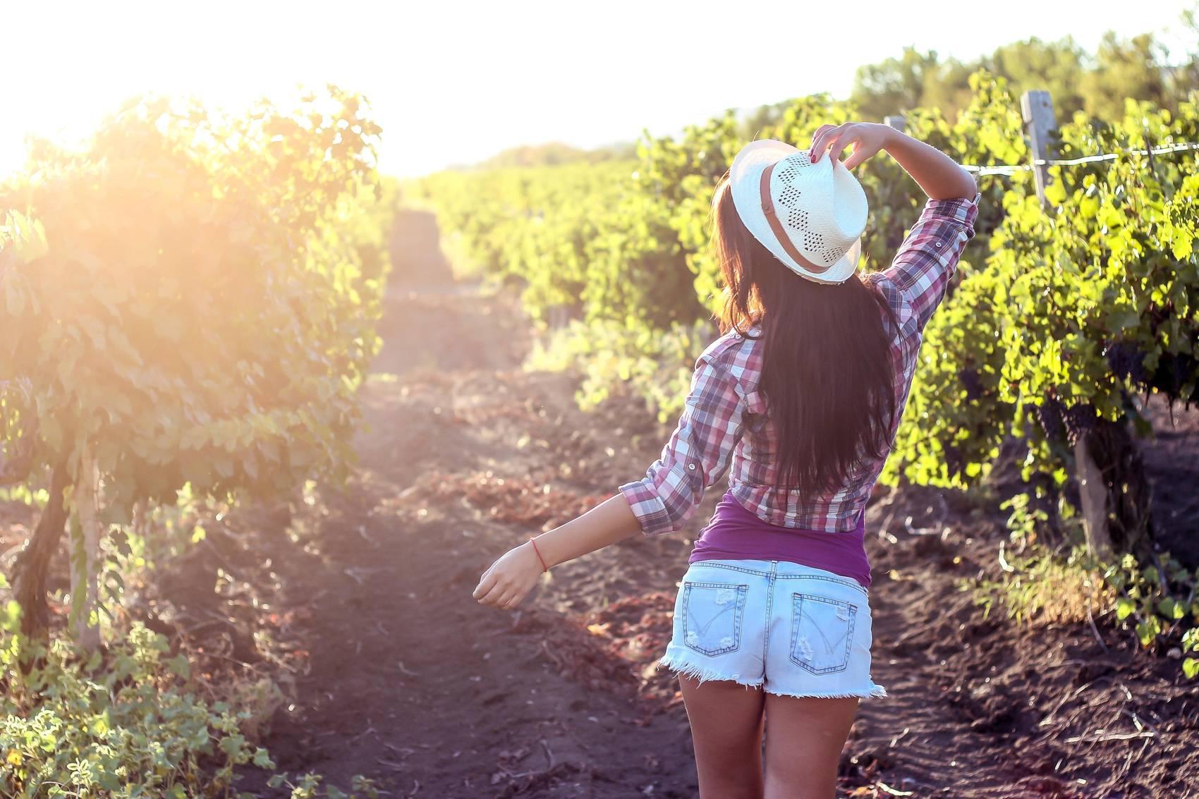 wine-regions-canada