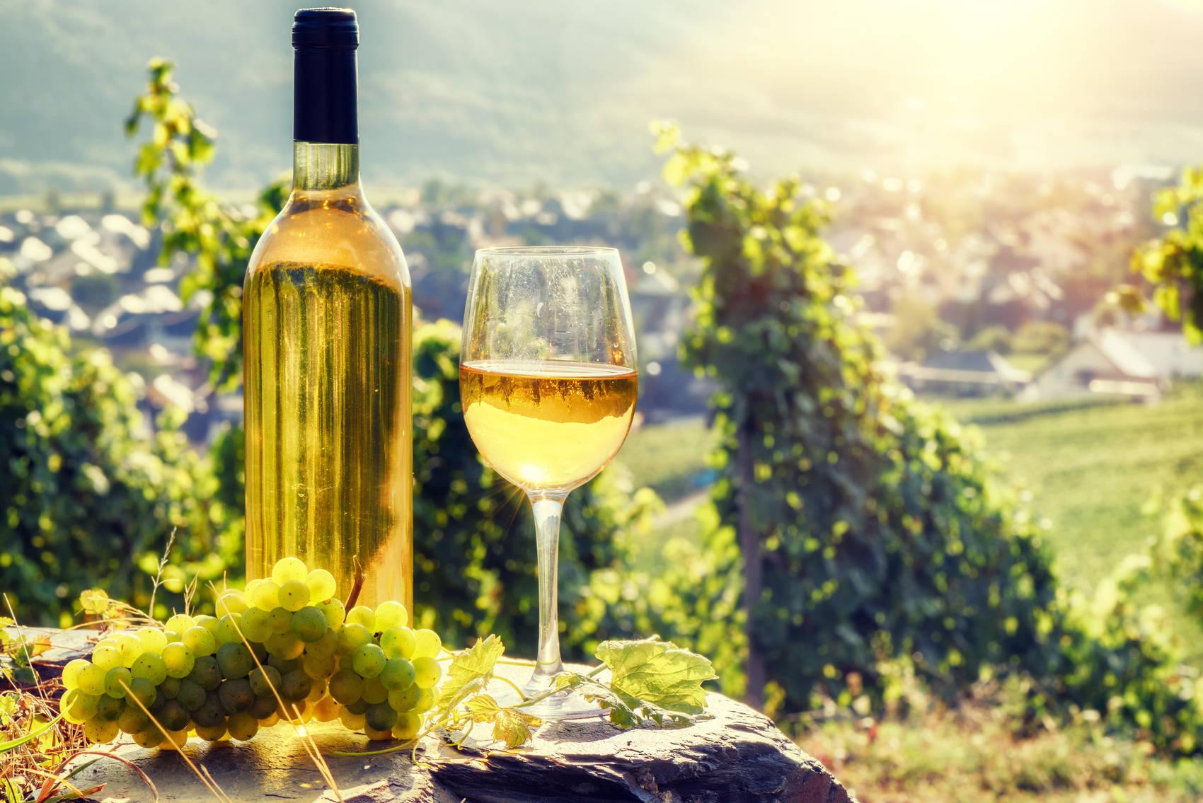 wine-regions-germany