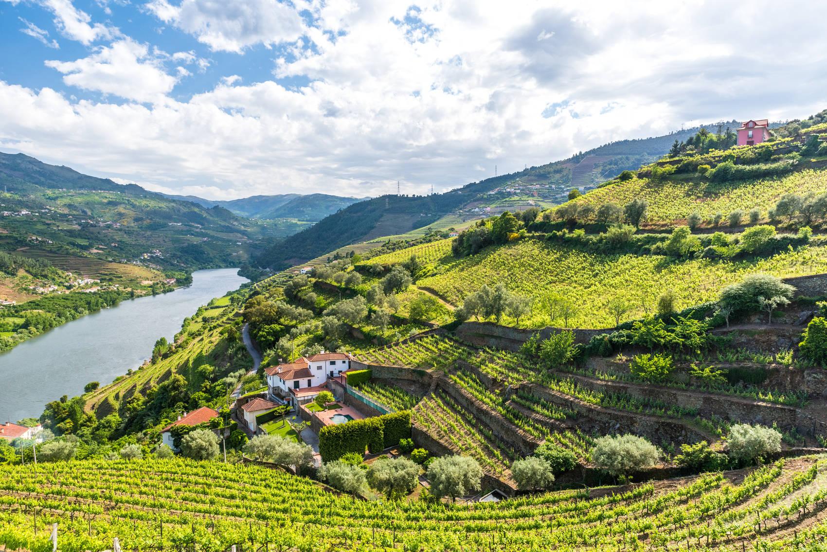 wine-regions-portugal