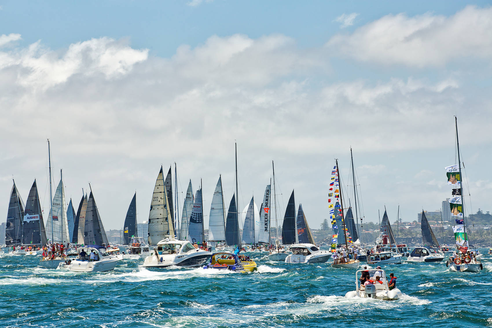 Sydney-experiences-yacht-race