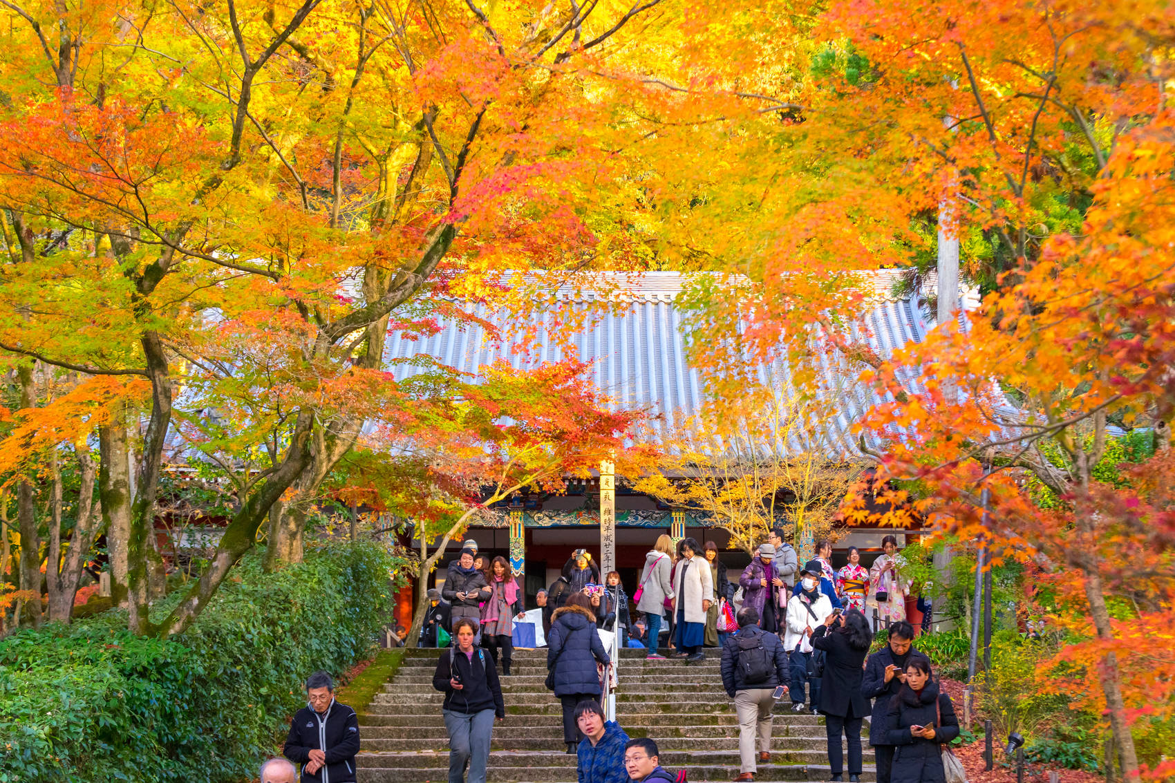 kyoto_autumn_japan