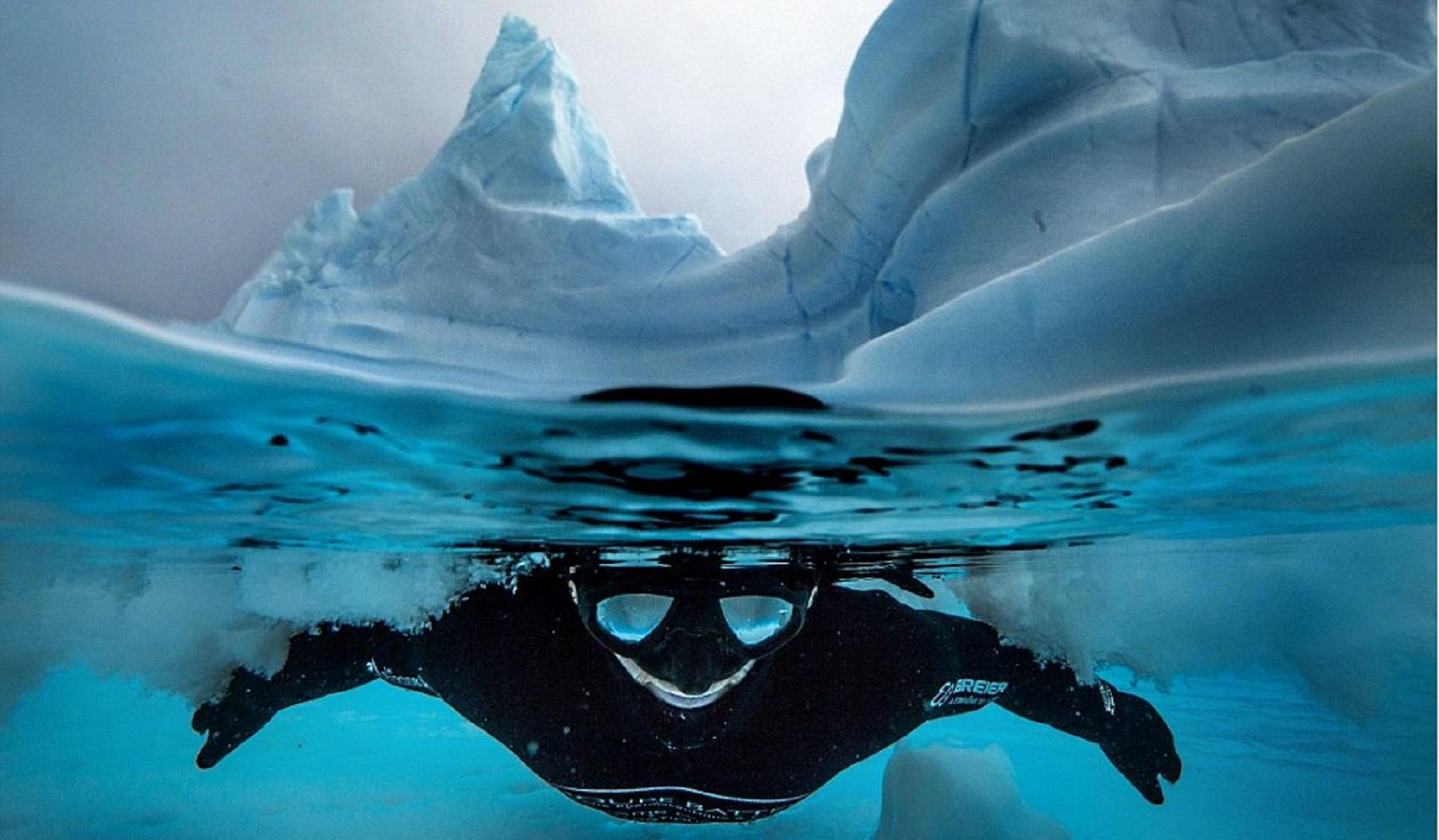 antarctica-dive