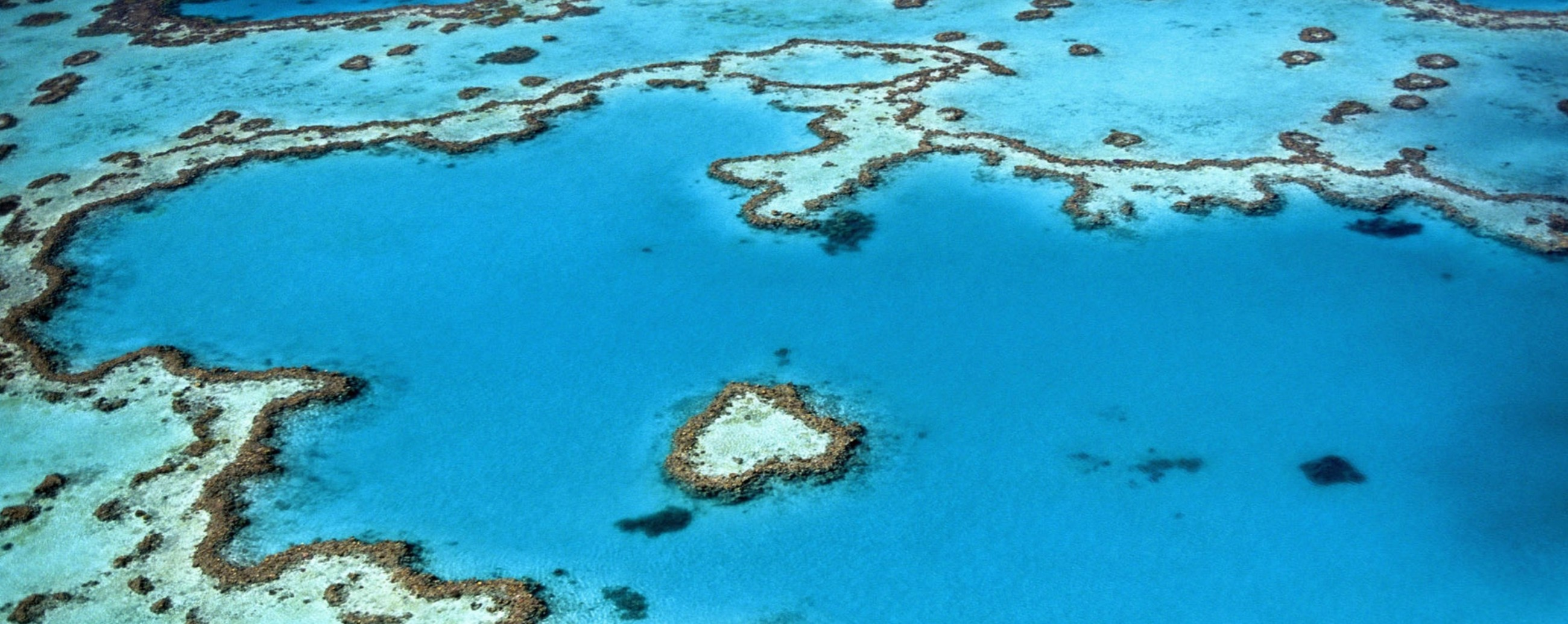 great barrier reef header2