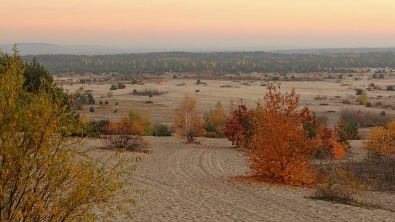 Poland-desert-landscape