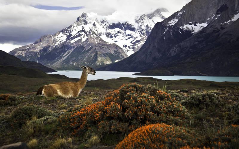 fastest growing tourist destinations-2018-chile