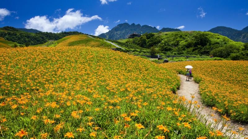 Taiwan-nature