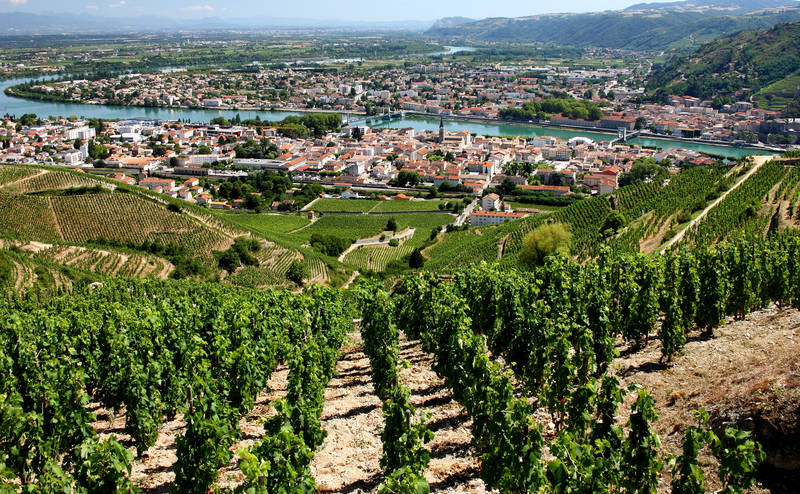 top-best places for wine tasting-world-rhone-valley