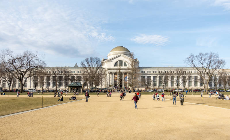 top-best-washington d.c. museums-natural history