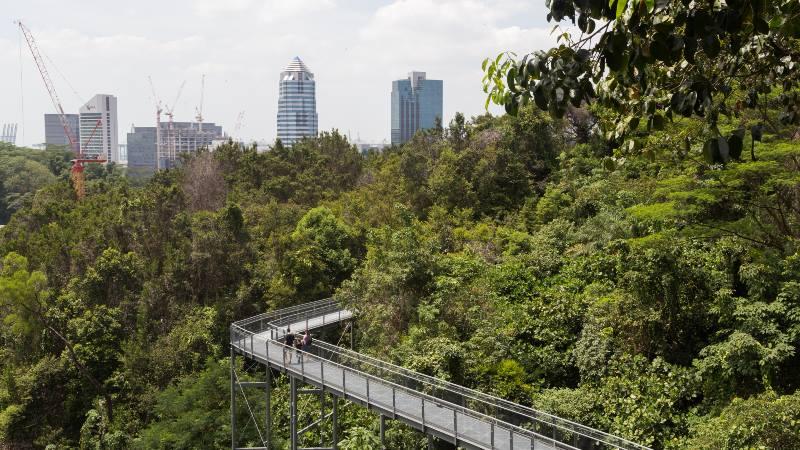 Orte-Singapur- Southern Ridges