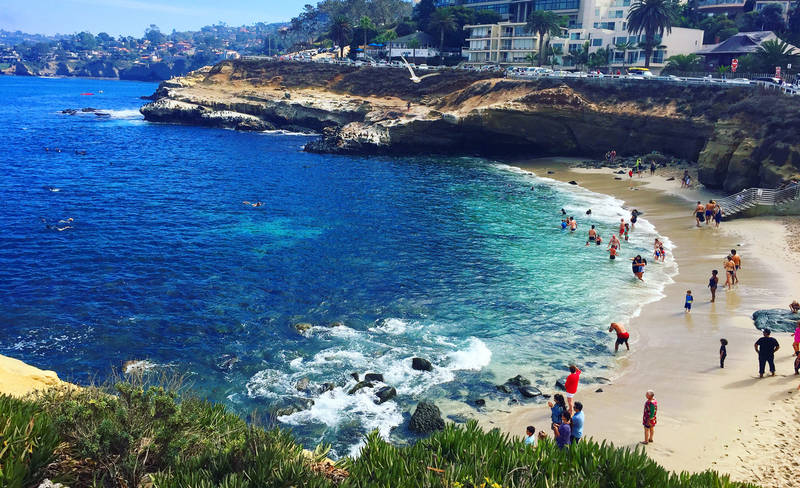 top-best beaches in the united states-la jolla-cove