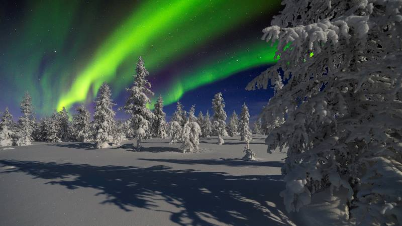 Lapland-Winter-Magic