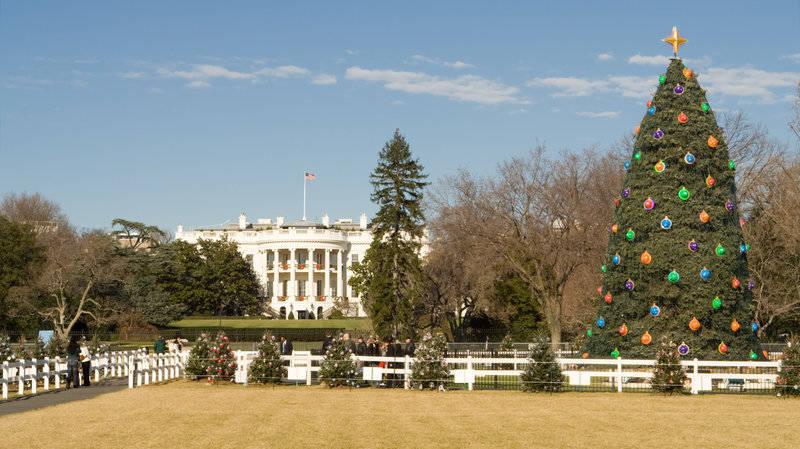 best-winter events in washington, d.c.-lighting-national-christmas-tree