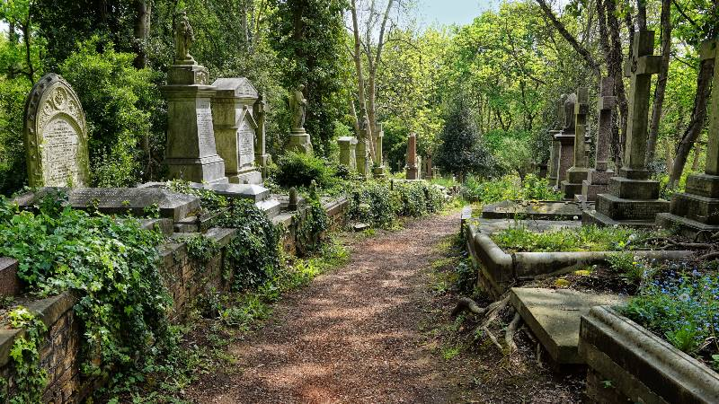 Graves-in-the-East-cemetery-of-Highgate-Cemetery-immersive-experience - Halloween Celebration