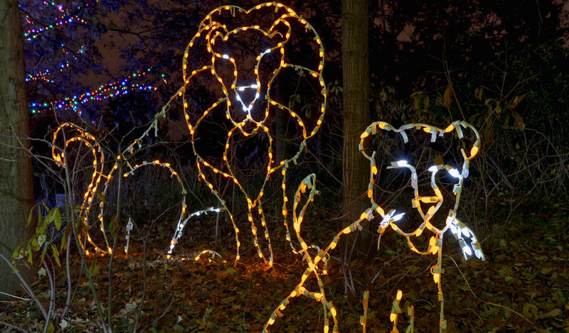 top-winter events in los angeles-l.a.-zoo-lights