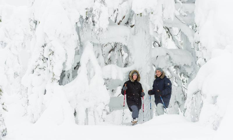 two-people-in-a-Nordic-winter-scene-in-front-of-snow-covered trees