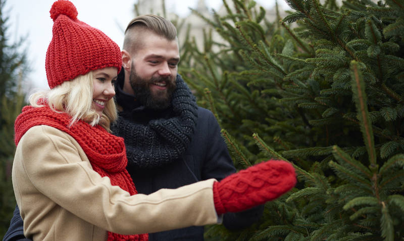 traditional-ways-celebrate-christmas in america-picking-out-tree