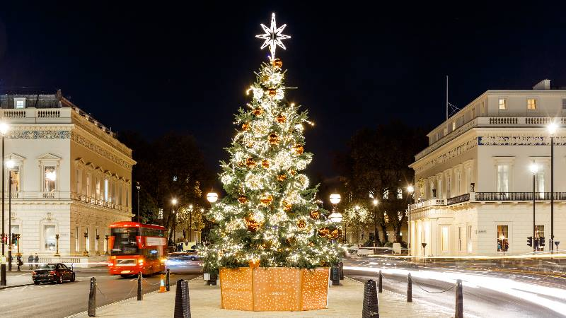 Christmas-in-the-UK-Christmas-tree-in-London
