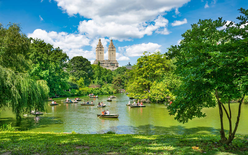 touring new york on a budget-central-park