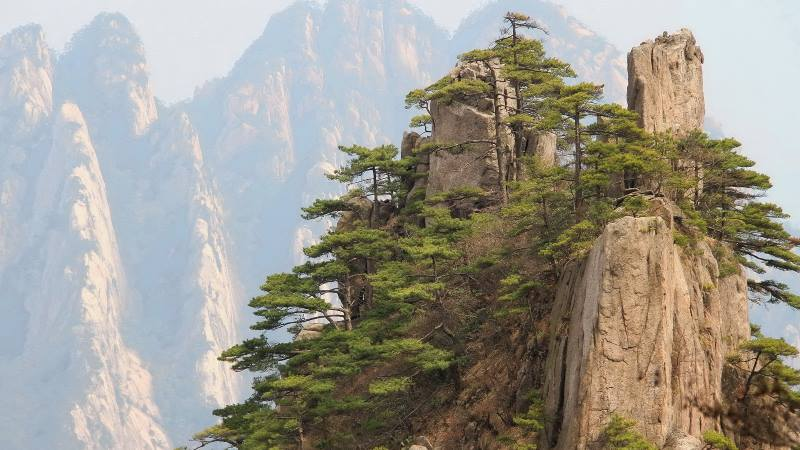 The-Huangshan-mountain-in-China-view-of-trees-on-the-mountain-edge-mountains-to-climb