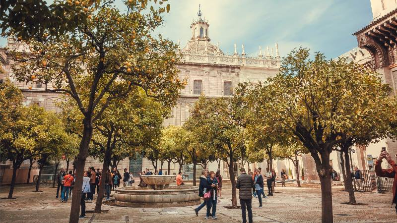 People-near-the-cathedral-with-the orange-trees