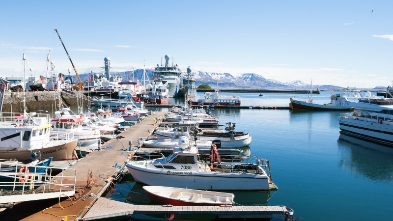 View of the boats in the Old Harbour of Reykjavik