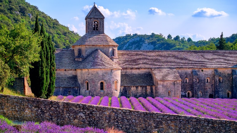 Out to Provence and the lavender fields